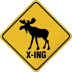 Moose Crossing Metal Magnet