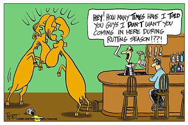 Rutting Season Postcard