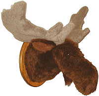 Leon - Extra Large Moose Trophy Mount