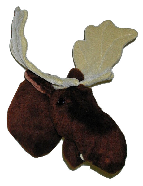 Shorty - Medium Moose Trophy Mount - Click Image to Close
