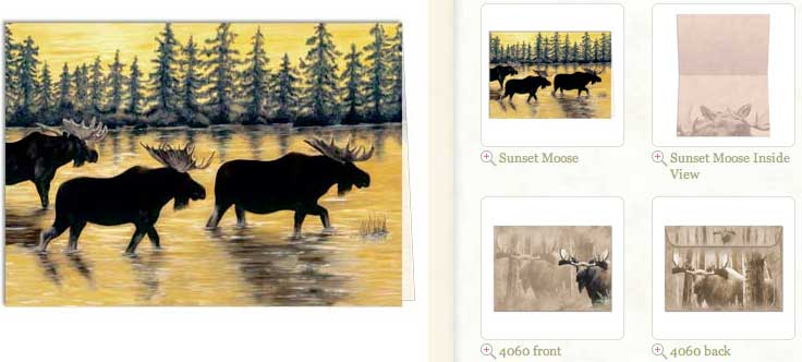 Sunset Moose... Blank Greeting Card