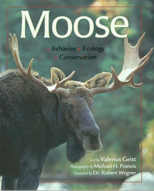 Moose: Behavior, Ecology & Conservation