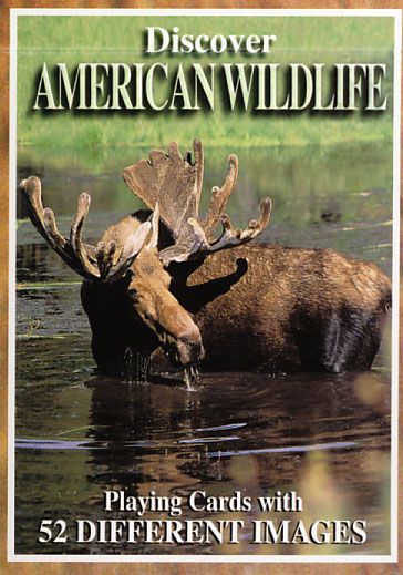 American Wildlife Playing Cards