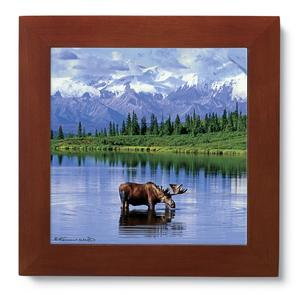 Ceramic Trivet - Moose of the Mountains